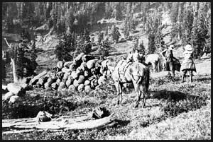 Men, women and horses at Kimta Creek camp