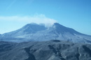 Mount St. Helens Succession Collection